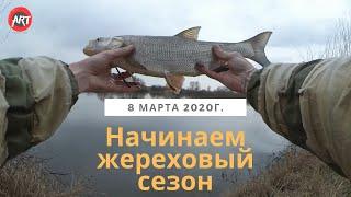 Ловля жереха на припяти в апреле 2020