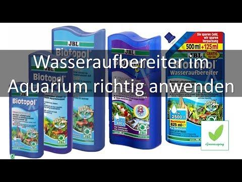 Wasseraufbereiter im Aquarium richtig anwenden