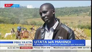 Uzozo watokea kuhusu ununuzi wa mahindi: Mbiu ya KTN