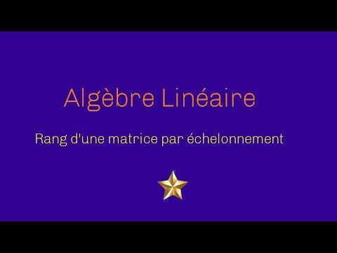 Rang d'une matrice échelonnement Exercice Corrigé 3   http://www.mathsprofessor.com