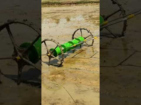 Agriculture Paddy Seeder