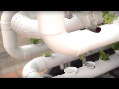 Del Techo, cultivo acuapónico para terrazas