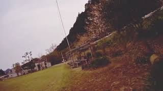 FPV Freestyle #2 2inch
