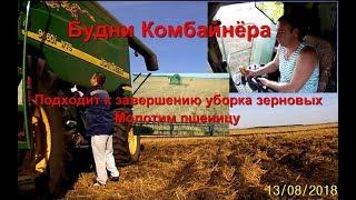 Будни Комбайнера  Подходит к завершению уборка зерновых  13 08 18