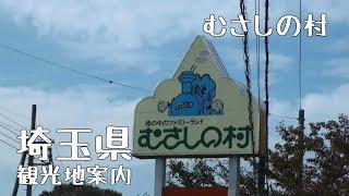 埼玉県観光地案内むさしの村編