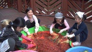 Gimjang, Kimchi, making for the winter - bobaepapa