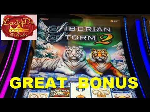 Siberian Storm 2 at Tampa Hard Rock by Lady Di Slots