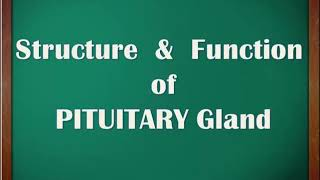 CH04-CHEMICAL COORDINATION IN ANIMALS-PART07-PITUITARY GLAND