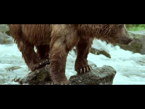 Bande annonce exclusive Terre des Ours