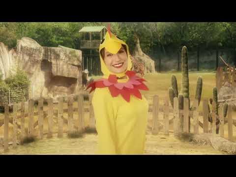 Disfraz de gallina adulta