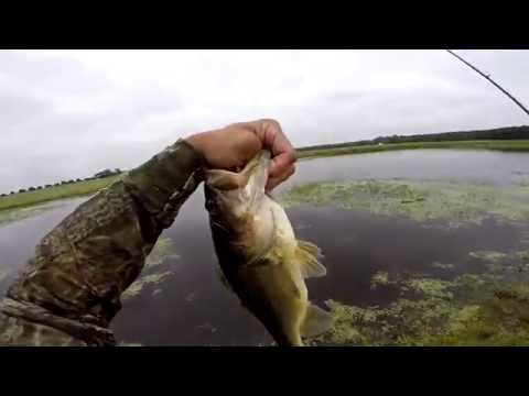Bass fishing (Topwater Farm Bass) GoPro Hero3+ 720p HD