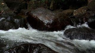 Freely flowing Kallar River, Thiruvananthapuram