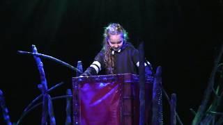 Efteling Sprookjessprokkelaar de musical (sneak preview)