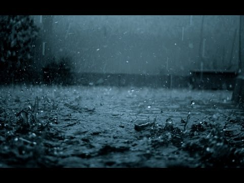 Rain Sounds 1 Hours | The Sound of Rain Meditation, Autogenc Training, Deep Sleep,Relaxing Sounds