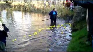 preview picture of video 'Duck Race 2008'