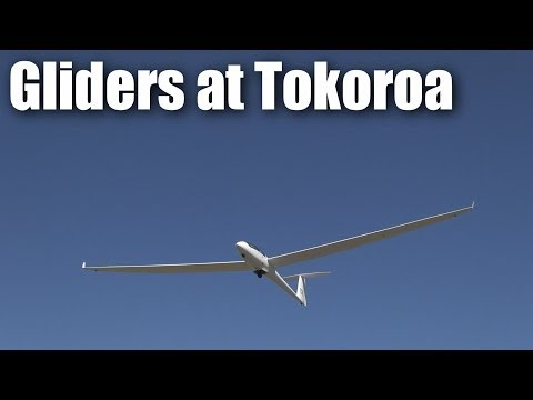 tokoroa-full-sized-gliders