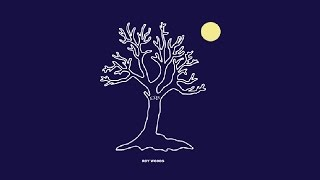 Roy Woods - Drama feat. Drake (Audio) @Roy Woods