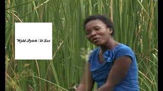 Martha Mwaipaja Tusikate Tamaa