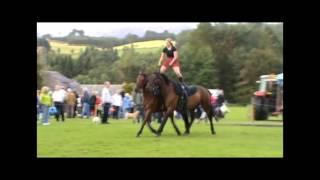 Equestrian Stunt Team