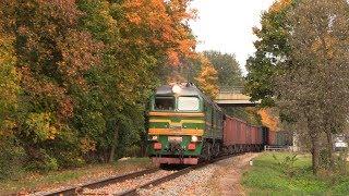 Тепловоз 2М62-0894 в осенних красках / 2M62-0894 in autumn colors