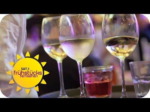 Teurer Wein vs. billiger Wein: Der Preisschmecker Test | SAT.1 Frühstücksfernsehen | TV