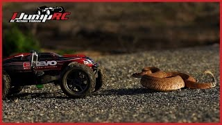 Traxxas E-Revo Rattlesnake Encounter