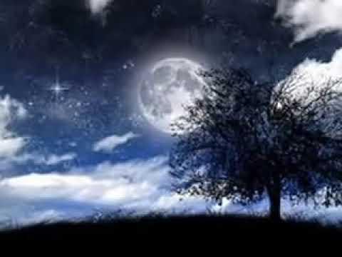 Meditação Louse Hay Atraia saúde, riqueza e paz enquanto você dorme Música para dormir e afirmações