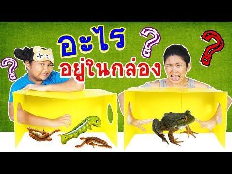การป้องกันยาเสพติด worming
