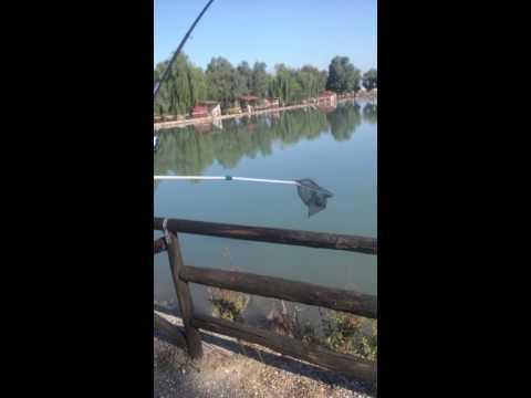 Lago che pesca crucian regione di Chelyabinsk