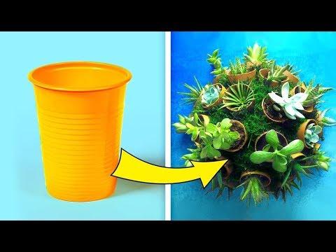 22 Ideias criativas para suas plantas!