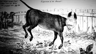 Why a Donkey for Democrats? | America 101