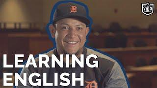 Latino Baseball Players on Learning English   La Vida Baseball