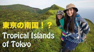 南国の島東京都八丈島旅動画TropicalIslandTokyoHachijojimaTravelmovie