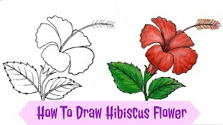 How To Draw Hibiscus Flower Step By Step Art म फ त
