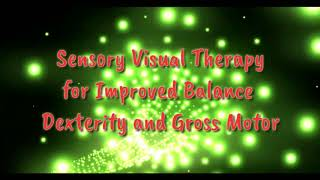 Sensory Visual Therapy Light Tunnel