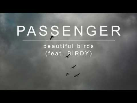 Música Beautiful Birds (feat. Passenger)