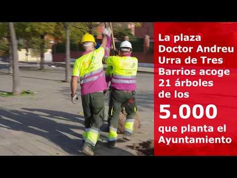 Ayuntamiento planta 21 almeces en Tres Barrios con la nueva campaña