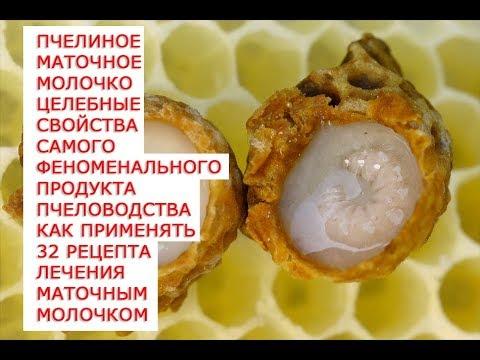 Пчелиное маточное молочко целебные свойства самого феноменального продукта пчеловодства как применят