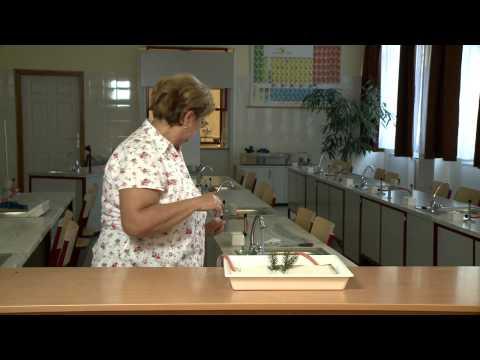 fogyás álló asztal fogyás tanulmányok pittsburgh pa