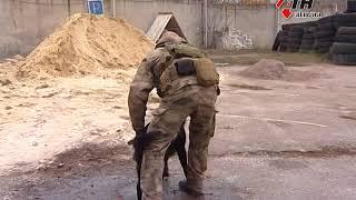 На улицах Харькова появятся патрульные-кинологи - 22.11.2017