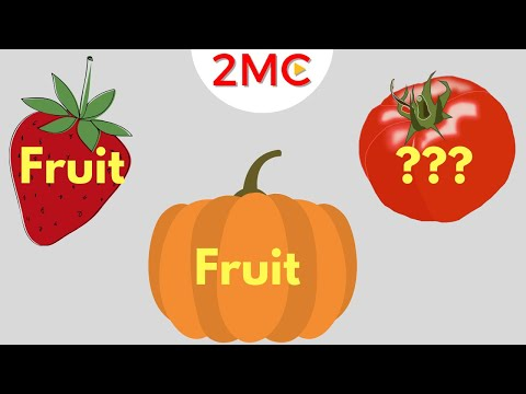 , title : 'Is it a Fruit or a Vegetable? | Fruits vs Veggies