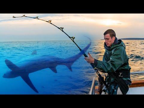 Hajfiskeri i England med Carl og Alex