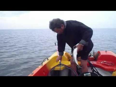 Biquet et le palangre Magique 2011