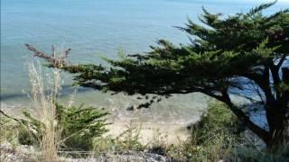 preview picture of video 'port de pornichet  chemin côtier saint-marc-sur-mer  plage de mr hulot saint nazaire'