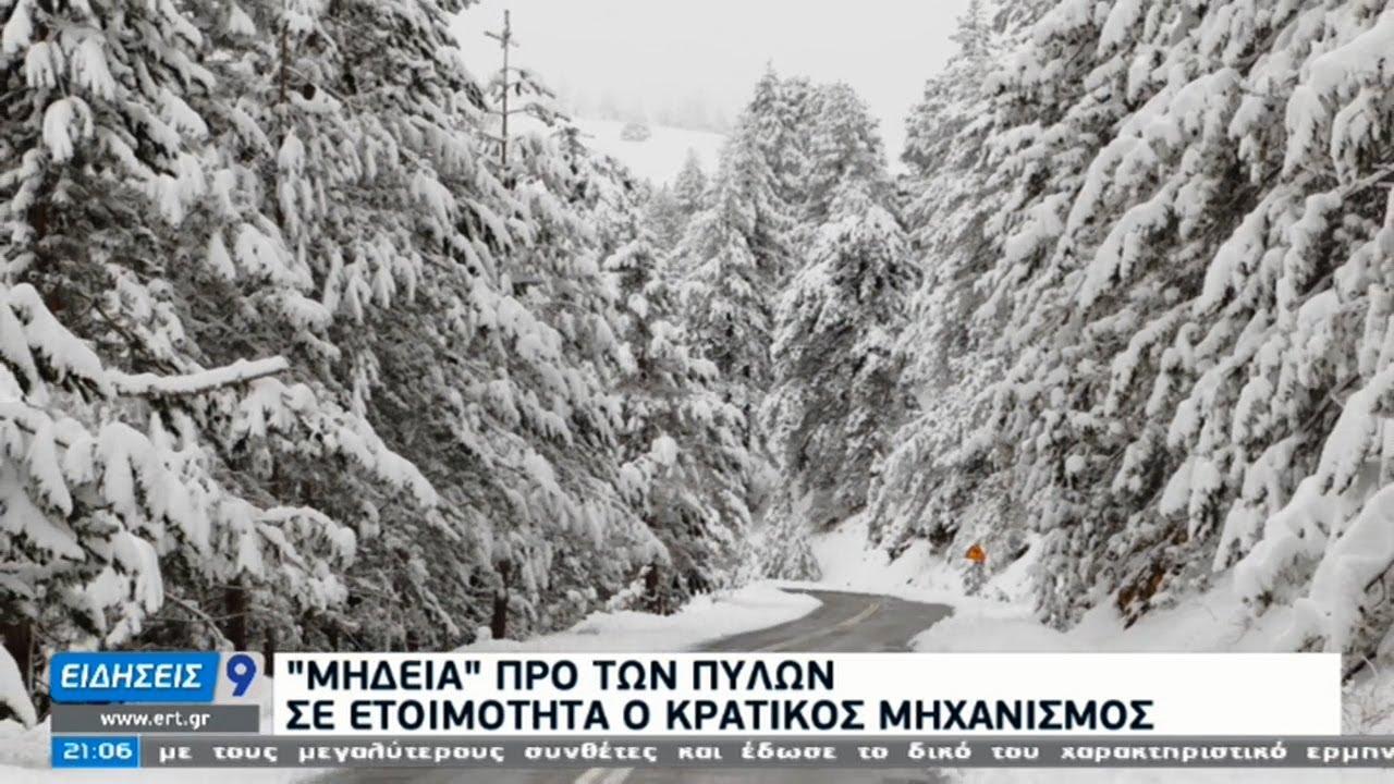 Κακοκαιρία «Μήδεια»: Σε ποιες περιοχές θα χτυπήσει ο χιονιάς | 12/02/2021 | ΕΡΤ