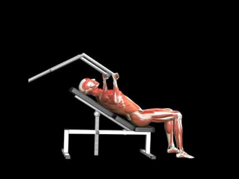 Incline Bench Press (Lever)