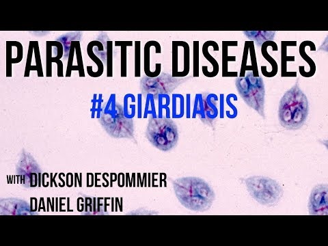 Giardia treatment