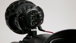 Rode Stereo VideoMic X: Things to Know