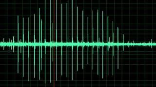 Blood Pressure: Korotkoff Sounds 2