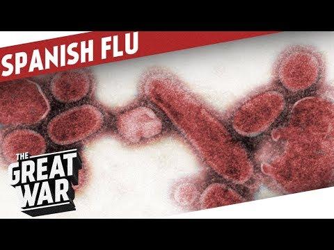 Španělská chřipka – epilog 3